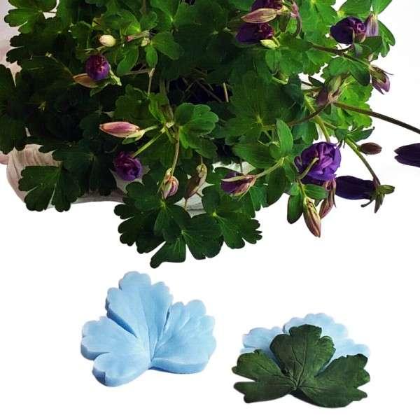 """Veiner """"Akelei Blatt"""" ( Aquilegia, leaf ) ca.7 x 8 cm"""
