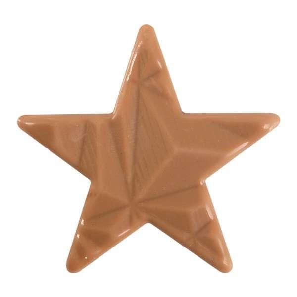 "Schokoladendeko Caramel ""Stern Relief"" ca.55mm , 60 Stck"