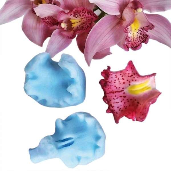 "Veiner ""Cymbidium Orchidee Lippe"""